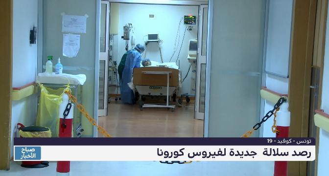 تونس.. رصد سلالة جديدة لفيروس كورونا