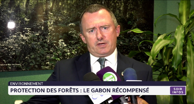Protection des forêts: le Gabon récompensé