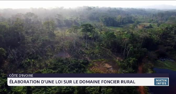 Côte d'Ivoire: élaboration d'une loi sur le domaine foncier rural