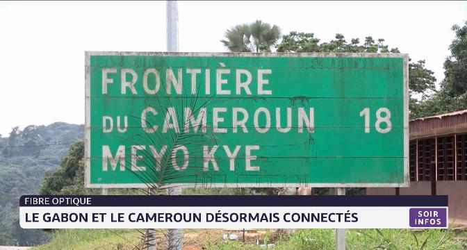 Fibre optique: LeGabon et le Cameroun désormaisconnectés