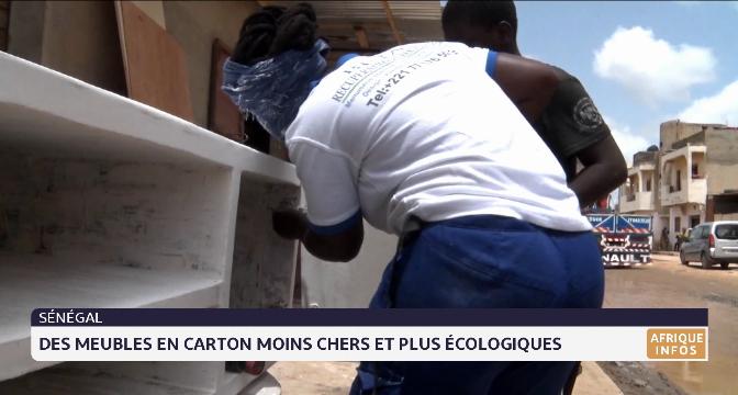 Sénégal: des meubles en carton moins chers et écologiques