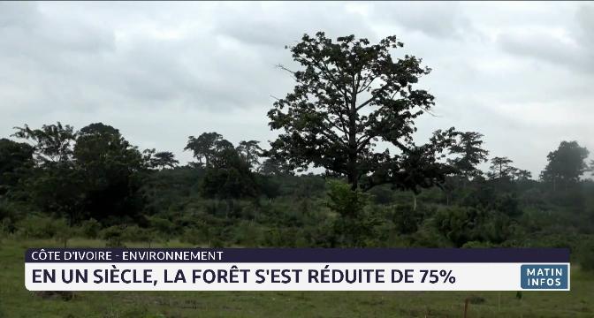 Côte d'Ivoire- environnement: en un siècle, la forêt s'est réduite de 75%