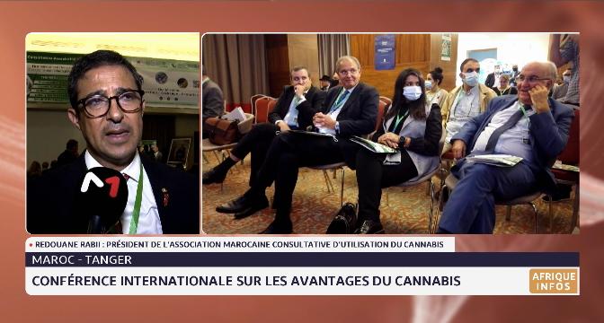 Tanger: conférence internationale sur les avantages du cannabis