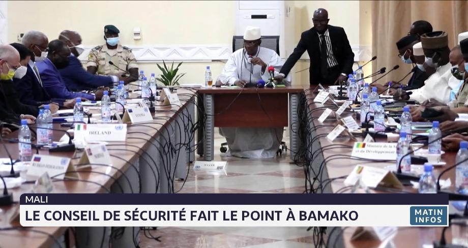 Mali: le conseil de sécurité fait le point à Bamako