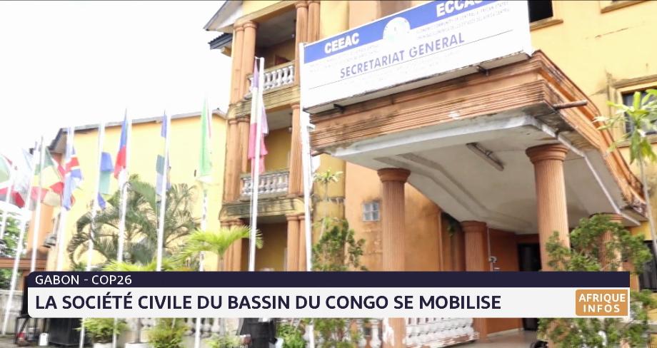 Gabon: la société civile du bassin du Congo se mobilise