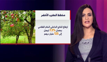 ملف.. استراتيجية مخطط المغرب الأخضر لتنمية القطاع الفلاحي