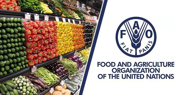 الفاو: أسعار الأغذية العالمية تتراجع في يوليوز