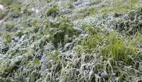 توقعات طقس بداية الأسبوع .. درجات الحرارة تصل إلى 06- بالمرتفعات