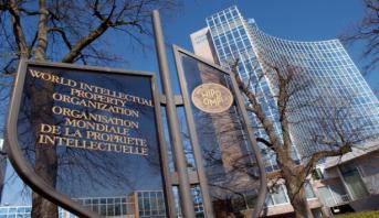 Propriété intellectuelle : l'OMPIC et l'OMPI signent un mémorandum d'entente