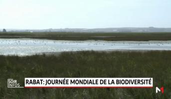 Rabat: journée mondiale de la biodiversité