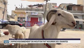 Sénégal-Tabaski: l'approvisionnement en moutons fait nourrir des craintes