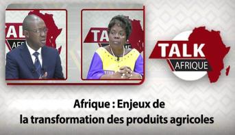 Talk Afrique > Afrique : Enjeux de la transformation des produits agricoles