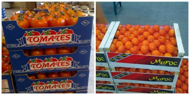 Fruits et légumes: le potentiel en exportations marocaines vers la Russie demeure important