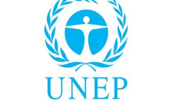 برنامج الأمم المتحدة للبيئة.. تدهور النظم البيئية يكلف 68 مليار دولار سنويا في إفريقيا