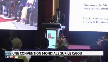 Abidjan: une convention mondiale sur le cajou