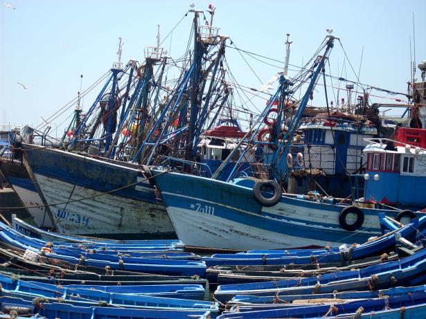 Pêche côtière et artisanale: hausse de 15% des débarquements à fin avril