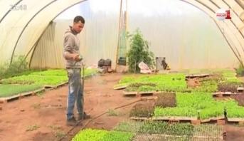 روبورتاج .. فوائد نظام الزراعة البيولوجية