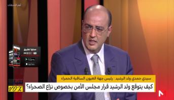 أهم اللحظات > سيدي حمدي ولد الرشيد وقرار مجلس الأمن بخصوص نزاع الصحراء المغربية