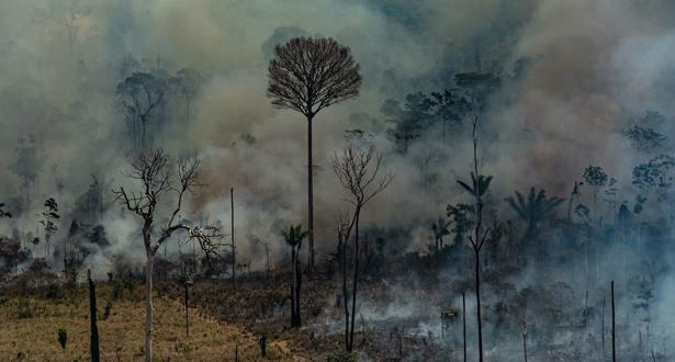 Amazonie: des centaines de nouveaux feux de forêt
