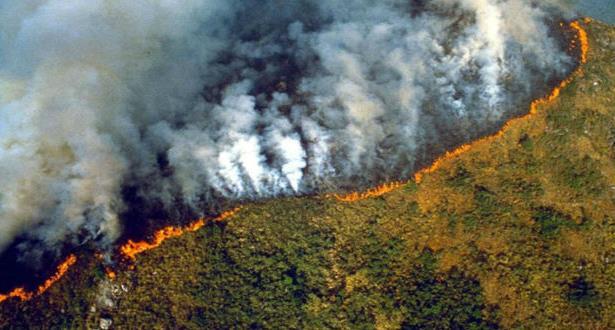 """البرازيل ترفض مساعدة """"جي 7"""" لإخماد حرائق الأمازون"""
