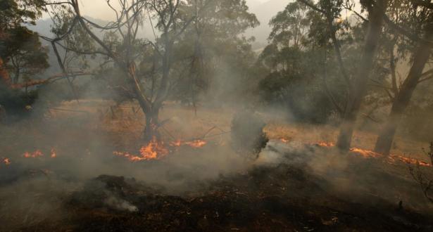 Australie : la pluie éteint certains incendies à l'est du pays