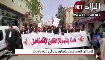 الجزائر .. المحامون يتظاهرون في عدة ولايات