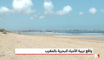 بيئتنا .. واقع تربية الأحياء البحرية بالمغرب