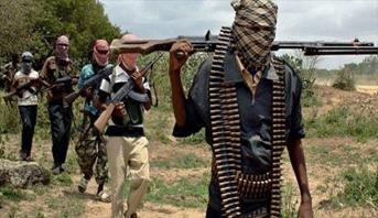 منظمة العفو الدولية تطلب تحقيقا جديدا ضد تنظيم بوكو حرام