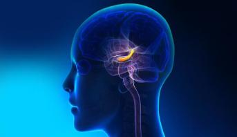 دراسة : النسيان دليل على أن العقل يعمل بكفاءة