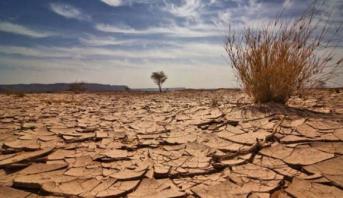 الوافي: المغرب ملتزم بسياسة استباقية وطموحة لمكافحة التغيرات المناخية