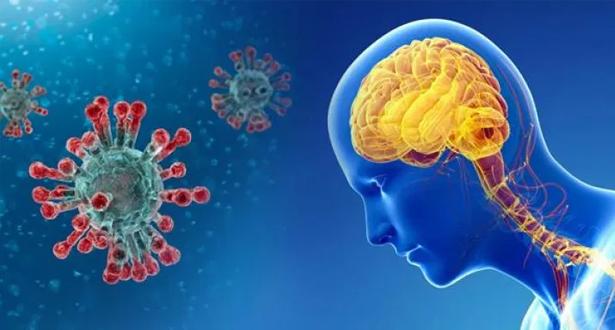 دراسة تكشف أن تأثير كورونا على الدماغ يستمر لأشهر