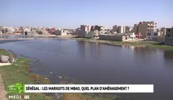 Croissance Verte > Sénégal : Les marigots de Mbao, quel plan d'aménagement ?