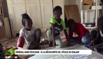 Croissance Verte > Éducation environnementale au Sénégal: à la découverte de l'école du Dialaw