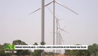Croissance Verte > Énergies renouvelables: le Sénégal lance l'exploitation de son premier parc éolien?