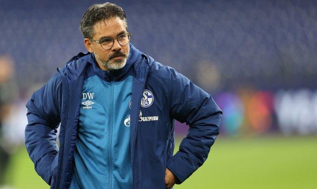 Allemagne: Schalke 04 se sépare de son entraîneur David Wagner