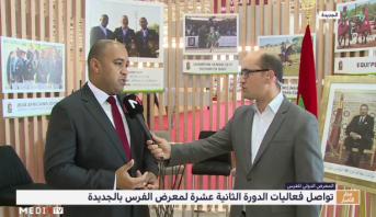 معرض الفرس بالجديدة .. إبراز جهود الجامعة الملكية المغربية للفروسية