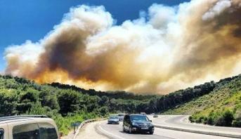 ارتفاع المساحة المتضررة من حريق غابة عين لحصن إلى 80 هكتارا