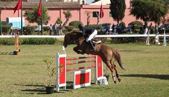 الفروسية .. المغرب يتأهل رسميا إلى أولمبياد طوكيو 2020
