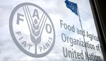 (الفاو) : ارتفاع أسعار الغذاء العالمية للشهر الثالث على التوالي