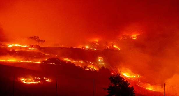 Trois morts dans des feux de forêt dans le sud de la Turquie