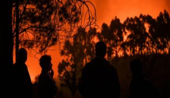 Portugal: les feux de forêt maîtrisés à 90%