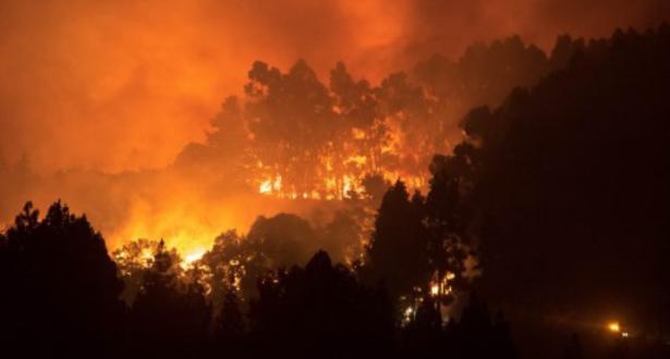 جزيرة كناريا الإسبانية.. إجلاء مزيد من الأشخاص بعد خروج الحريق عن السيطرة