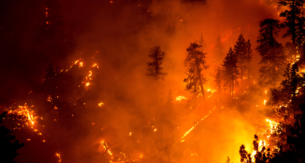 إخلاء مئات المنازل بسبب حرائق في ولاية كاليفورنيا الأميركية