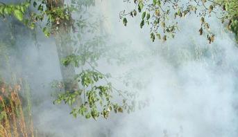 السيطرة على حريق غابوي بجماعة أوريكا بإقليم الحوز