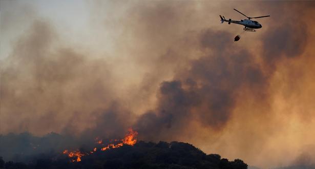 النيران تأتي على أزيد من 8000 هكتار بغابات إسبانيا