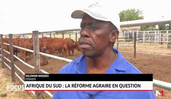 Afrique du Sud: la réforme agraire en question
