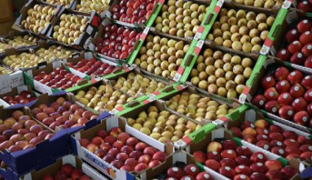 المواد الغذائية .. 30 في المائة من الأسر المغربية حافظت على نفس مستوى الإنفاق بشأن الاستهلاك الغذائي