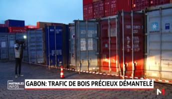 Gabon: démantèlement d'un réseau de trafic de bois précieux