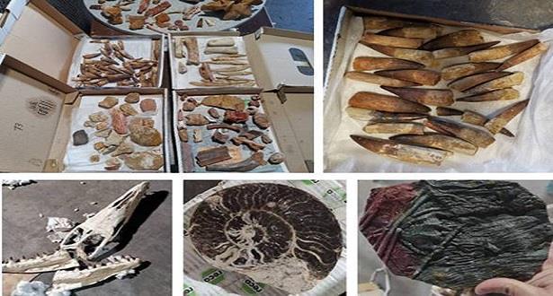 Mise en échec d'une tentative d'exportation illicite de près de 200 kg de pièces géologiques prohibées à l'exportation