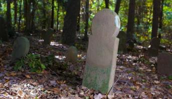 اكتشاف 150 قبراً في فرنسا تعتبر من الأقدم في بلاد الغال